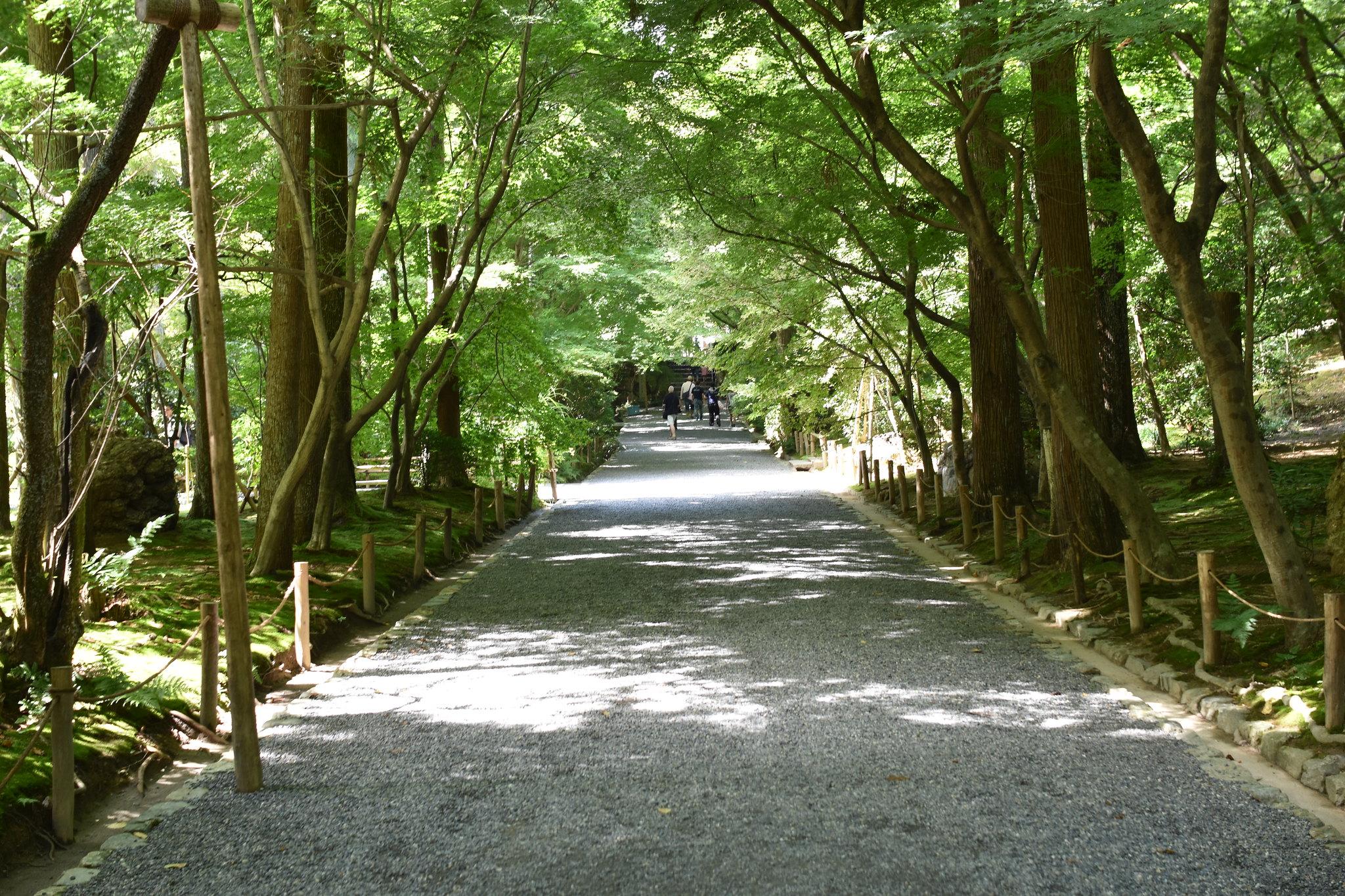 龍安寺(Ryoanji-temple)