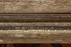 Piano has seen better days 作者 Denise Bonte