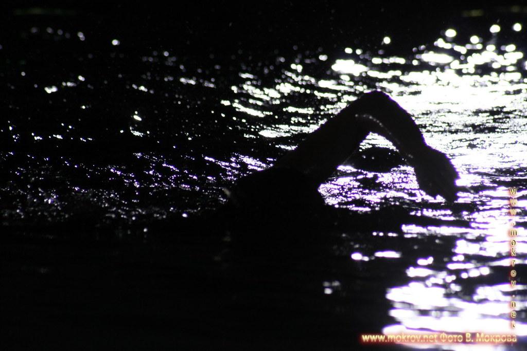 Сборная команда России по синхронному плаванию в этом альбоме фотоработы
