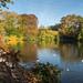 An Autumn Morning at Dunham - take 2