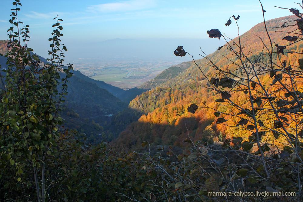 Bolu-nov2011-2380c
