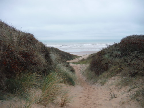 See the Sea through Sand Dunes in Camber