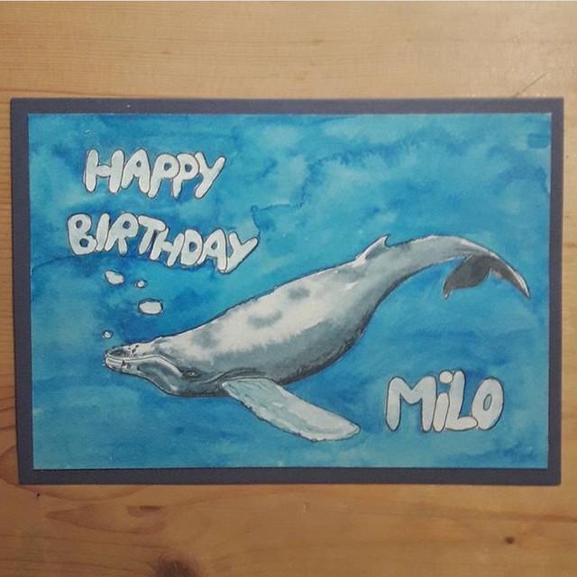 Milo's birthday