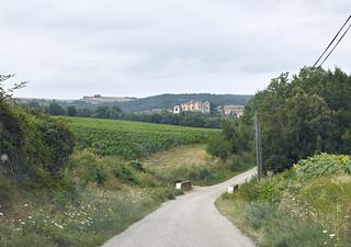Viñedos en la región de Languedoc-Roussillon, sur de Francia