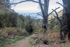 Erjos - Los Silos - Cuevas Negras