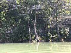 Comal River, Texas