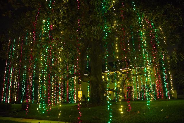 Christmas lights_30