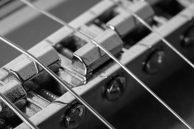 [058/365] Macro Monday: Musical Instrument