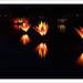 Light Show 341/365 (Explored, thanks) by John Penberthy ARPS