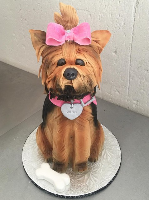 Cute Dog Cake by Romana Husain of The Bake Studio