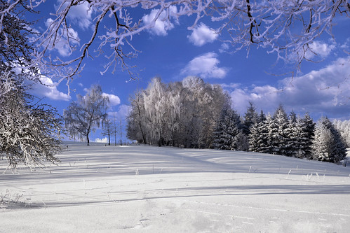Winter Christes