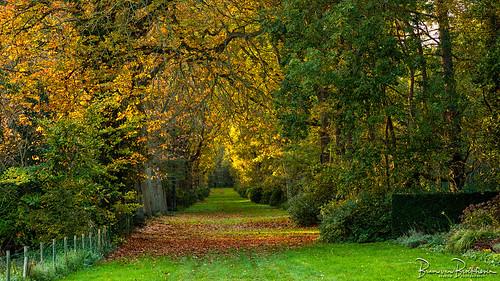 Autumn Haamstede Castle