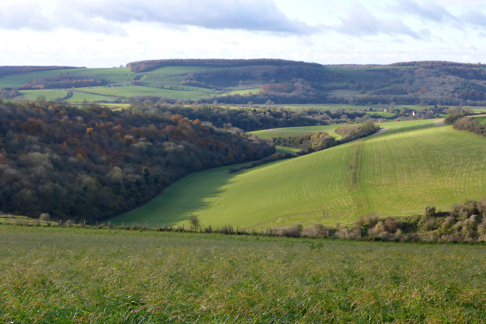 The South Downs near Amberley