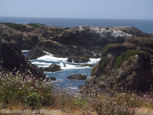 Cove along the Coastal Trail south of Glass Beach, California