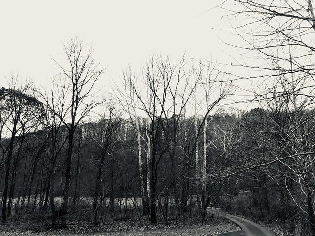 Autumn Ridgeline