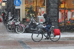 Leidsestraat - Amsterdam (Netherlands)