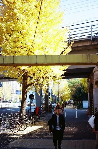 Tokyo 135-12