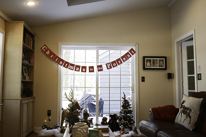 family room 11