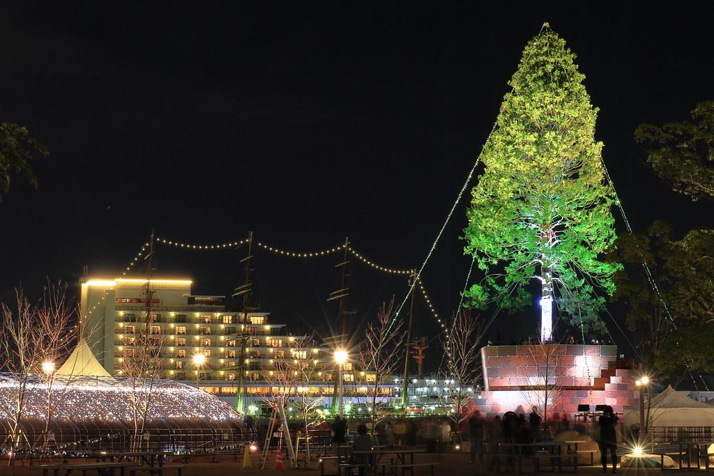 Christmas Tree002