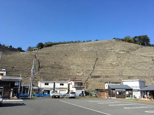 城壁のようなこれは一体なんでしょう
