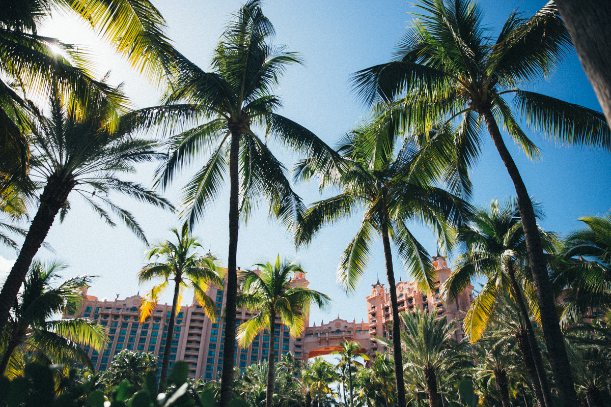 paradise island bahama nassau-10
