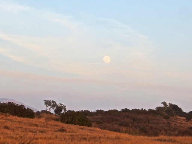 new years eve moon rise