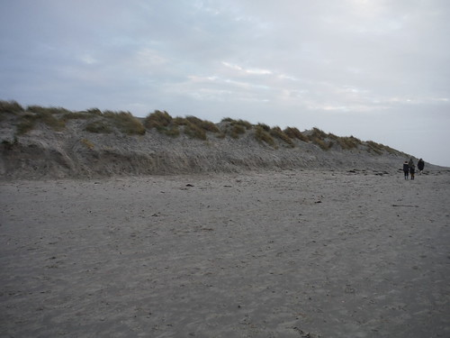 Sand Dunes, East Head, Chichester Harbour