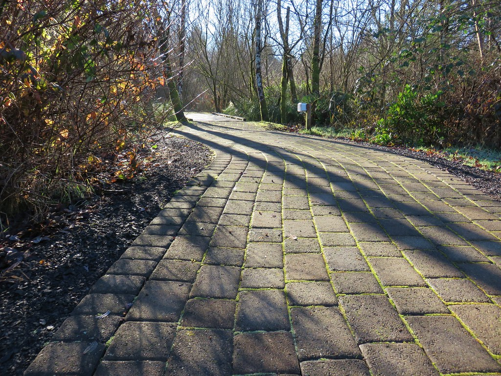 Brick path at Kilchis Point Reserve