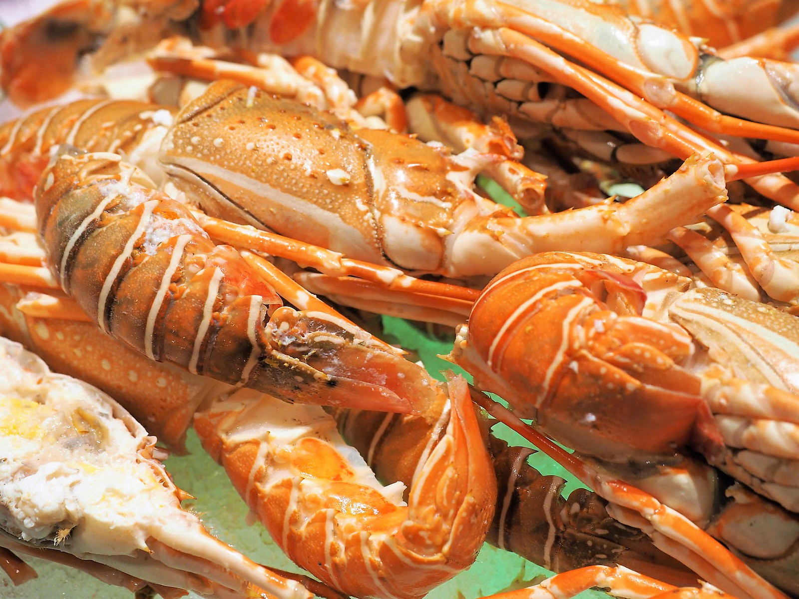 Baby lobster on ice at Feast @ Sheraton Petaling Jaya