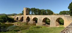 Puente de Frías, Burgos (Castilla y León)