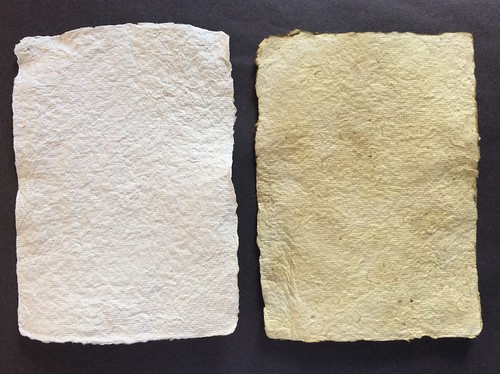Paper making first efforts