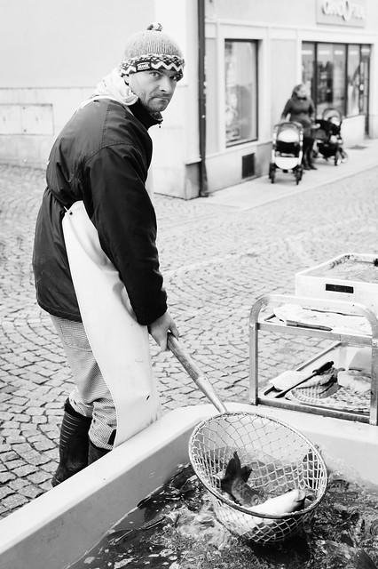Carp seller in Příbram, Bohemia.
