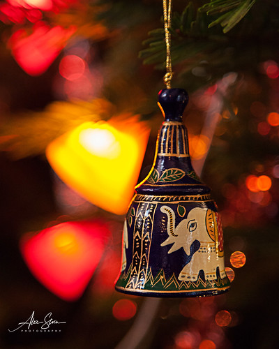 Merry Christmas (Les Olmes, France 2012)