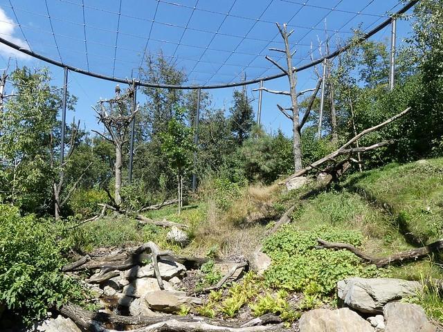 Gehege Riesenseeadler, Zoo Brno