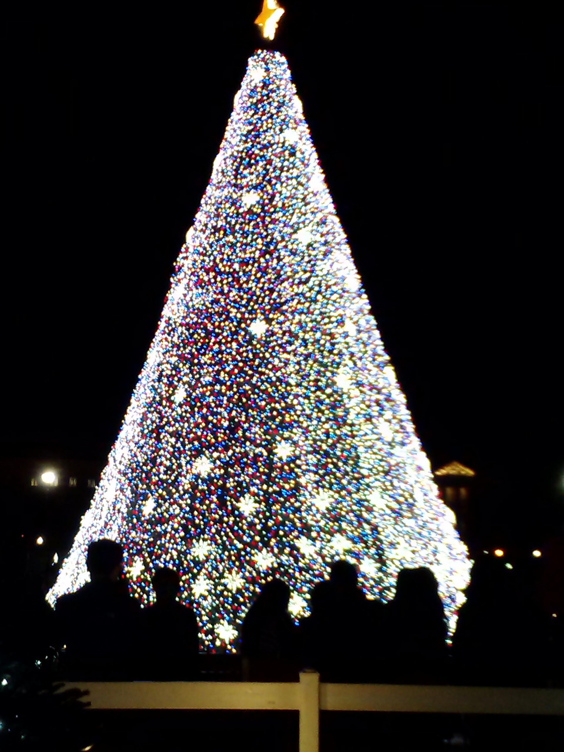 U.S. National Christmas Tree on December 25, 2016