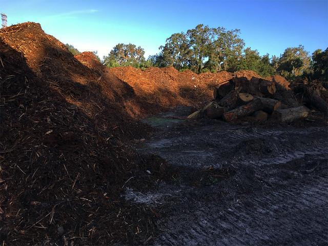 Irma debris mulch at River City Nature Park