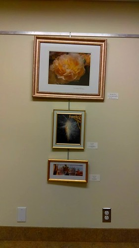 Calvert Library posted a photo:	DOES All art show at the Southern Branch.