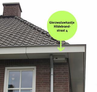 De Gierzwaluwnestkast bij Linda. Foto van struintuin.blogspot.nl