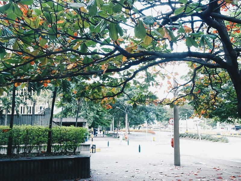 Parque dos Pés Descalços, Medellín • COL