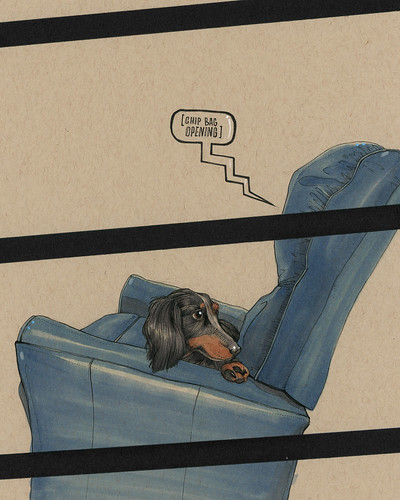 BUT THE GOOD CHAIRS ARE FOR PEOPLE, WIENER DAWG