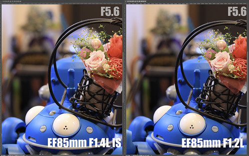 EF85mm F1.4L IS vs EF85mm F1.2L_17