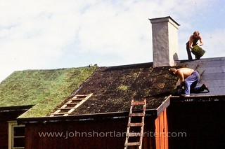 Turfing the Roof 1977