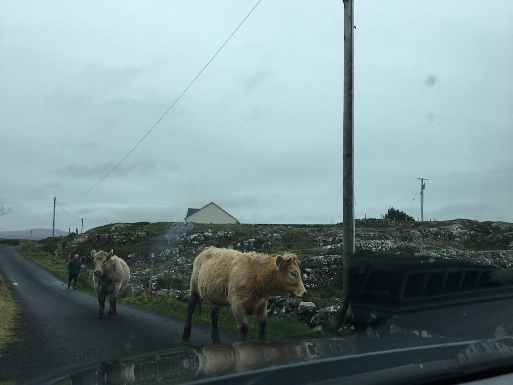 Irlanti - Autonvuokraus kokemus by Budget