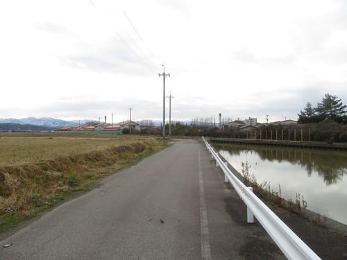 金沢競馬場の裏の道
