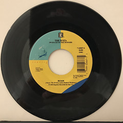 THE B-52'S:ROAM(RECORD SIDE-A)