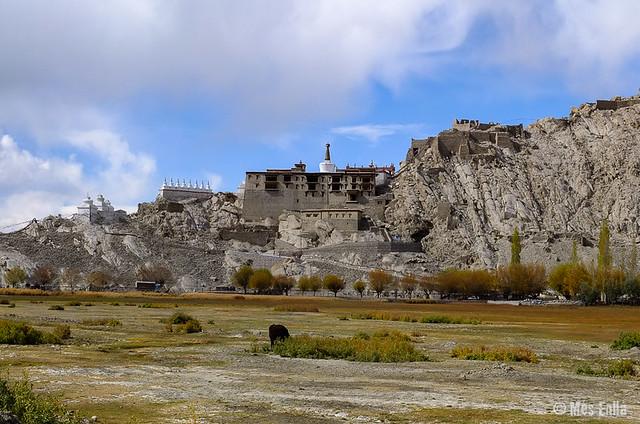 Palacio de Shey