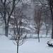 Raging Winter Storm