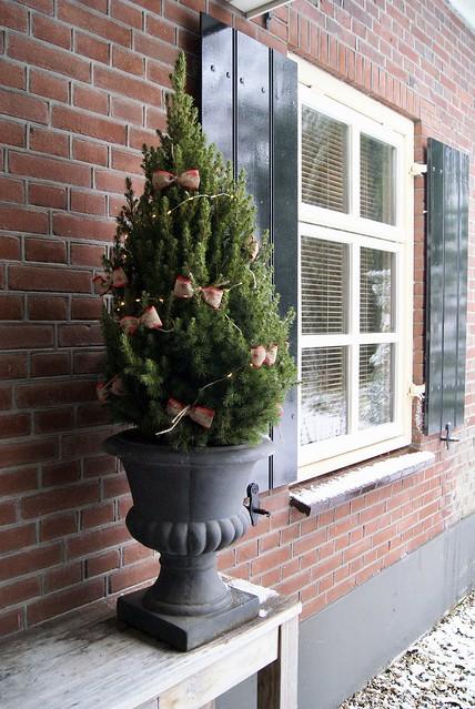 Raam met luiken Franse vaas met kerstboompje