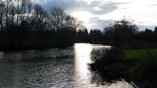 Avon, upstream from Stratford