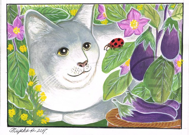 Grey Cat with ladybug and Eggplant in a veggie garden